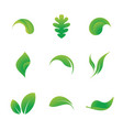leaf icons solated on a white background vector image