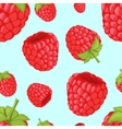 Seamless background with raspberries vector image
