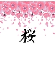 Graphic sakura flowers vector image