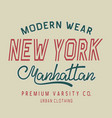typography new york label vector image