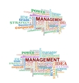 Management tags cloud vector image vector image