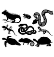 set of silhouettes of reptiles vector image