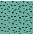 Horse Runs Hops Gallops Isolated Seamless Pattern vector image