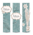 romantic spring daffodils banner set vector image