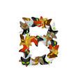 letter b cat font pet alphabet symbol home animal vector image