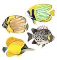 Exotic fish set vector image