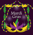 mardi gras carnival masks with feathers beads blur vector image