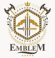 heraldic coat of arms vintage emblem vector image