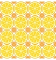 seamless citrus pattern vector image vector image