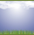 fresh green grass vector image