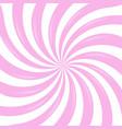 pink sunburst vector image