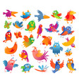 funny colorful birdies vector image