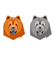 portrait of a chow-chow in a geometric style vector image