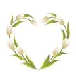Tulip heart frame vector image