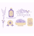 Vintage lavender background aromatherapy and spa vector image