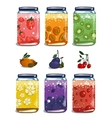 Bright Canned Sweet Fruit Jam Collection vector image vector image