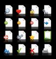 Professional Icon set vector image