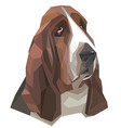portrait of basset-hound in a geometric style vector image