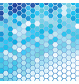 Blue and White vector image vector image