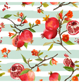 Seamless Pattern Pomegranate Tropical Background vector image