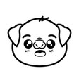 isolated cute pig face vector image