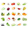 polygonal vegetables icon set vector image