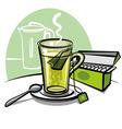 green tea and tea bags vector image