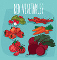 set of isolated clipart red organic food products vector image