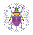 Insect Beetle Bug Design Elements Line Graphic vector image