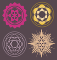 Variety of seed forms print Vector Image