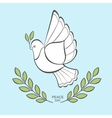 White dove with an olive branch vector image