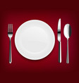 plate with spoon vector image