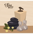 spa beauty and health wellness luxury vector image