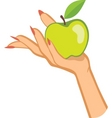 hand and apple vector image vector image