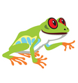 red eye tree frog vector image