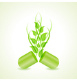 herbal or eco friendly capsule concept vector image