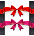 ribbon red pink bows vector image