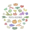 Fruit and vegetables doodles set vector image