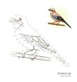 Eurasian jay bird learn to draw vector image