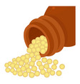 bottle of homeopathic medication icon vector image