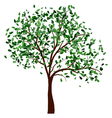 Summer tree vector