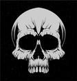 White Skulls vector image