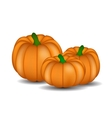 Fresh Orange Pumpkin Isolated on White Background vector image