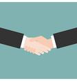 Hands handshaking close up vector image