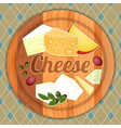 Cheese Plate vector image