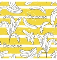 Bananas on yellow stripes vector image