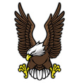 eagle with spreaded wings vector image