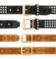 Leather belts with rivets and embroidery buttoned vector image