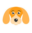 cute dog icon isolated on white background vector image
