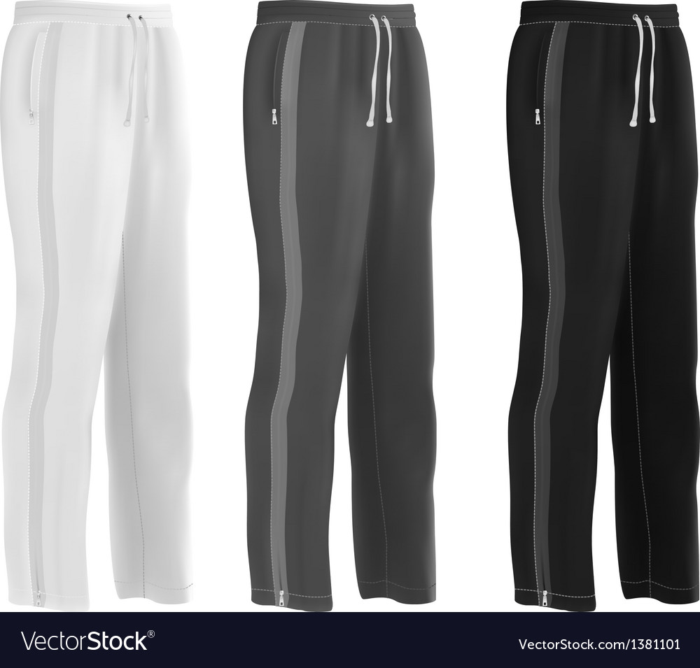 Sport sweatpants set vector